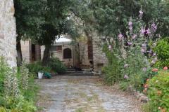3-ingresso